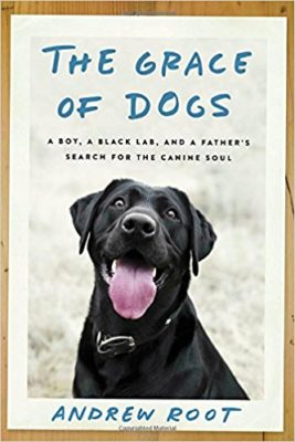 Grace of Dogs book cover